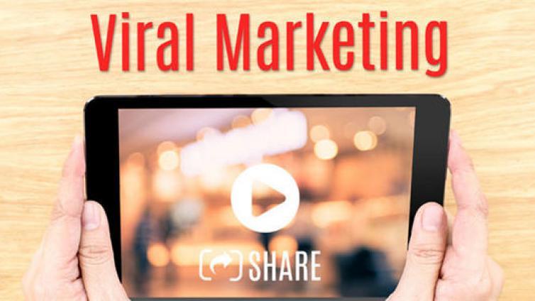 如何从0打造视频营销项目
